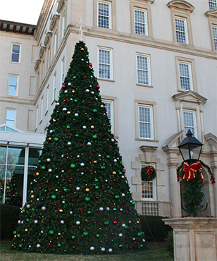 Our outdoor Christmas tree at Emory University