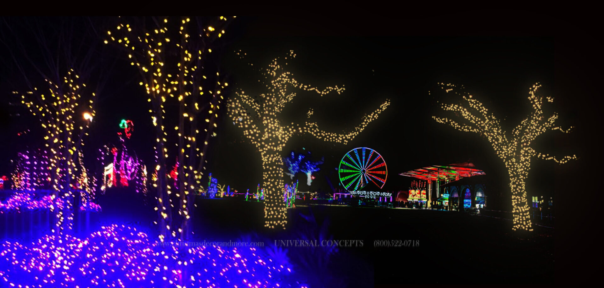 Mini lights and C7 light line cover the trees at Gulfport, Mississippi's Christmas Light Show